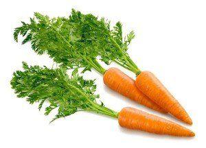 морковь посевная