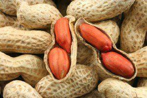 арахис земляной орех