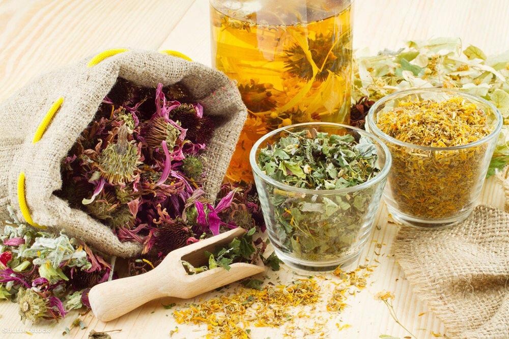 Травы для пищеварения и желудка