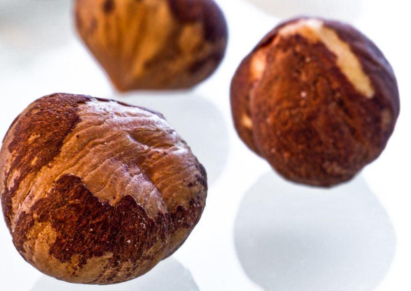 ядро ореха лещины