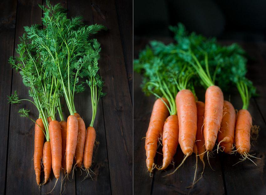культурная морковь