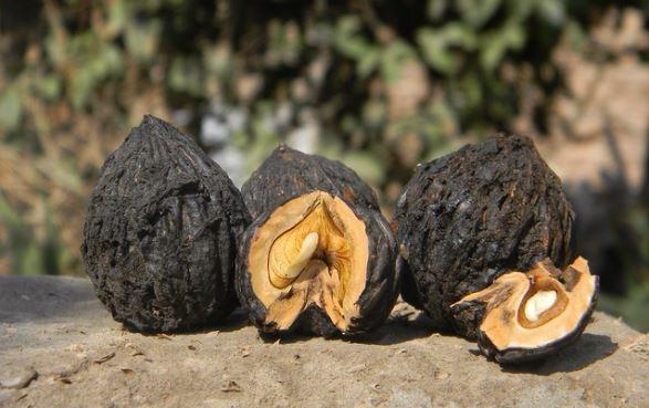 неотропический орех
